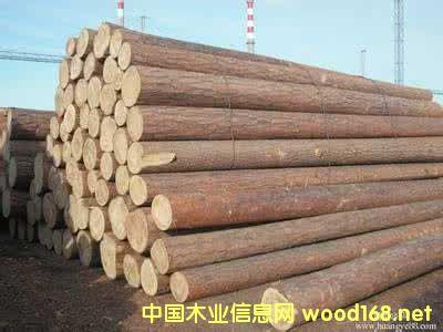 湖州进口铁杉原木