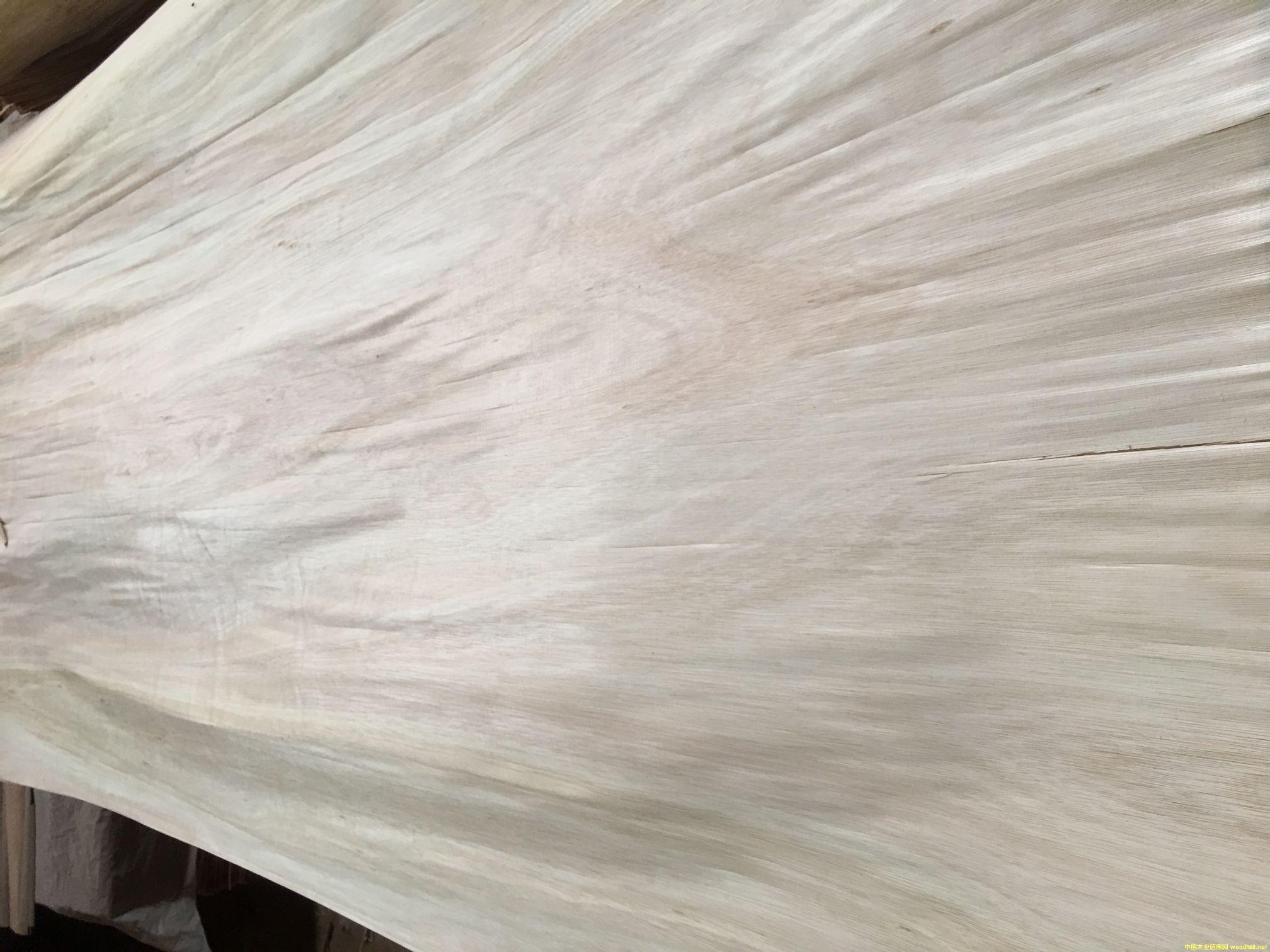 乌拉圭桉木生产面皮,出材率高