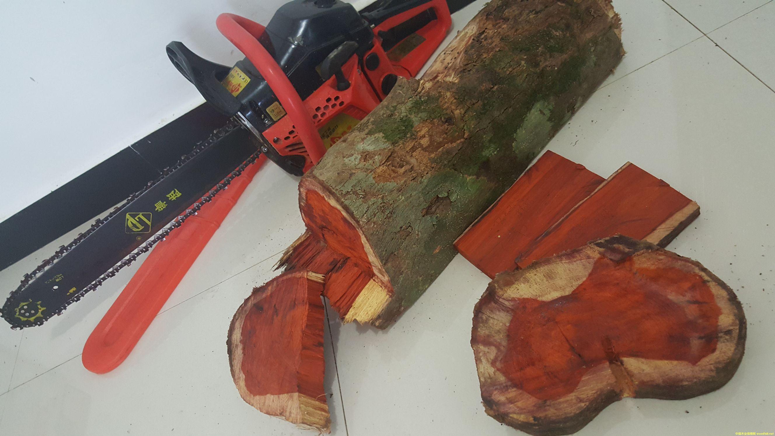 科檀 cam wood