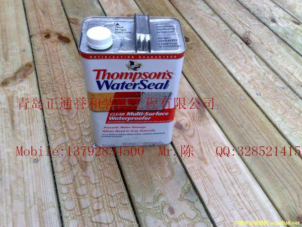 美国汤姆逊水封涂料