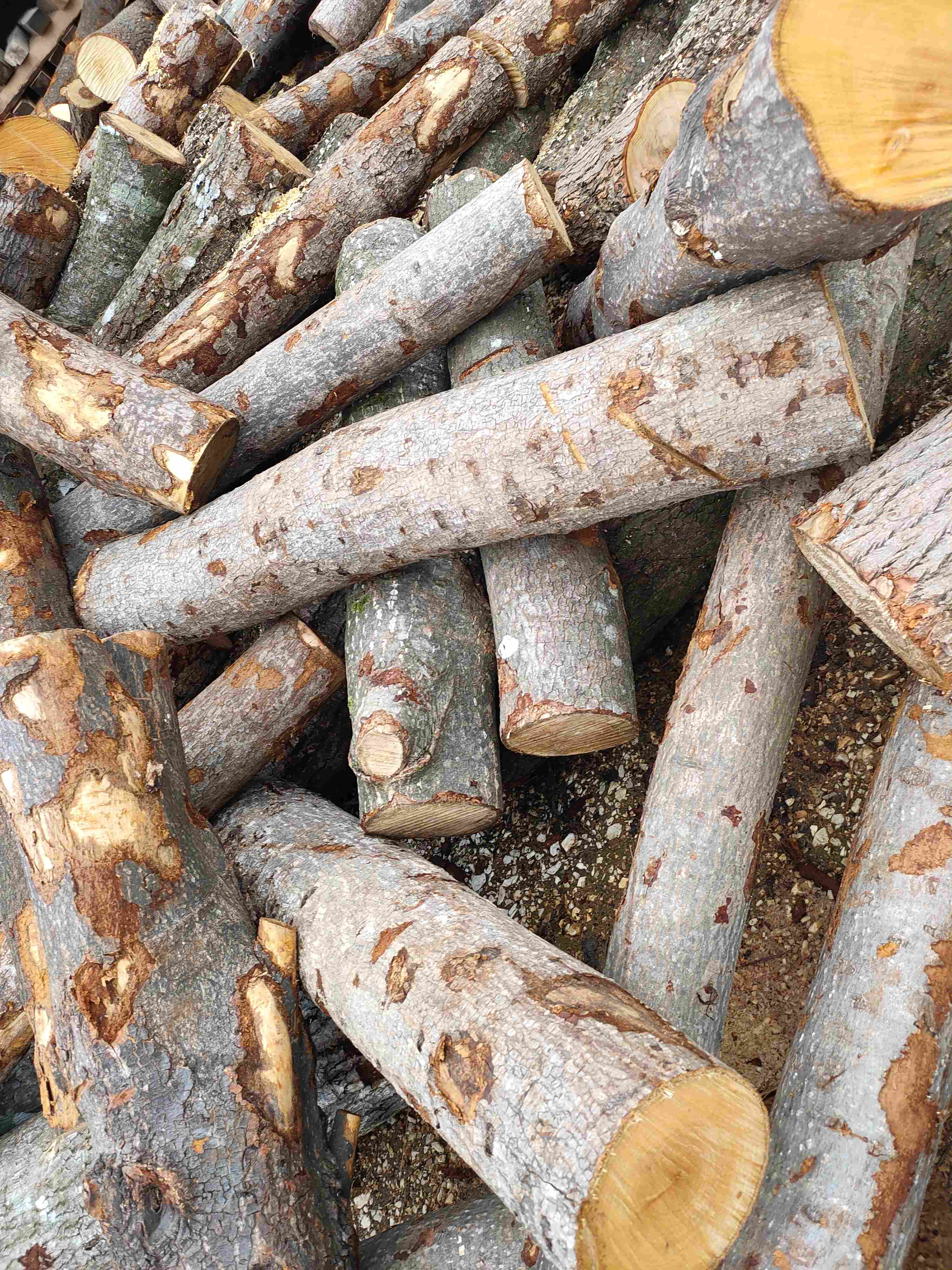 加工荷木工艺料