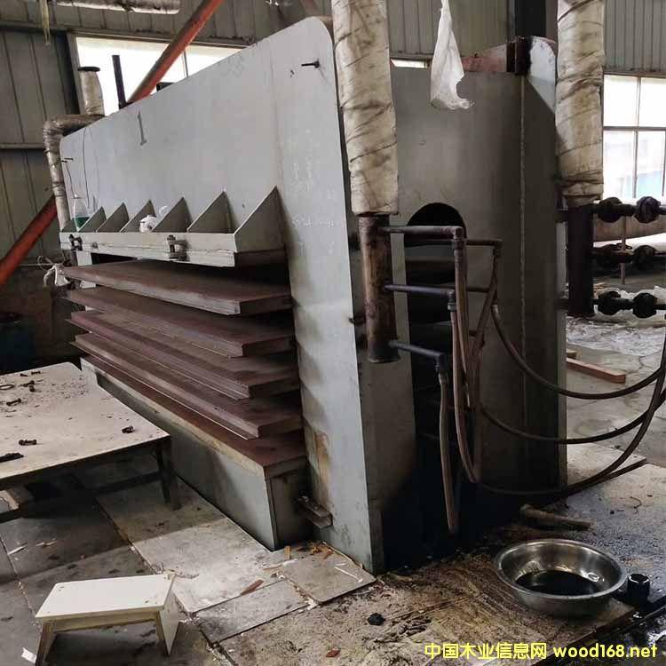 4*8尺 6压5层 临沂新天力产 压力600吨