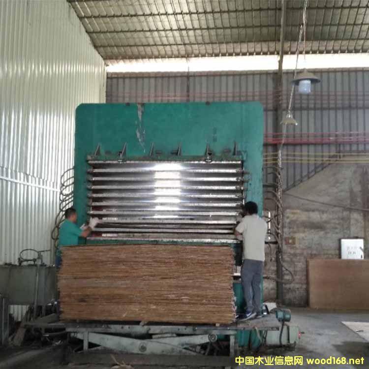 山东菏泽产4X8尺9层热压机