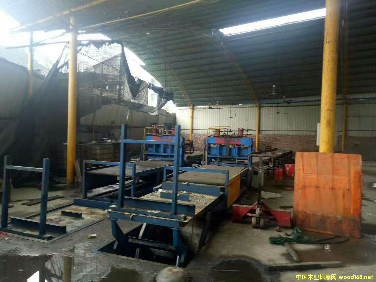 漳州华成3x6尺木模板生产线设备