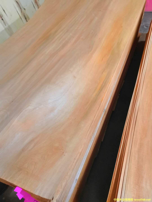 杂木面皮的详细介绍