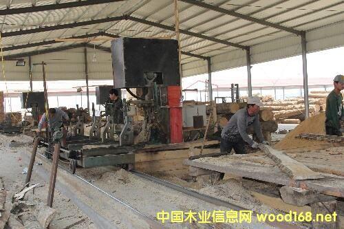 日照市国家级木材贸易加工示范区