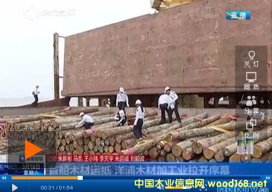 海南洋浦港木材加工业拉开序幕