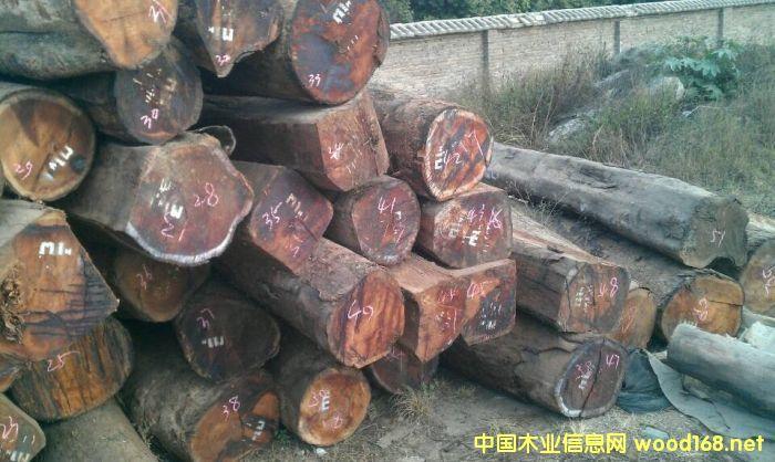 缅甸,老挝,柬埔寨,越南继续封关,大红酸枝原材消耗殆尽