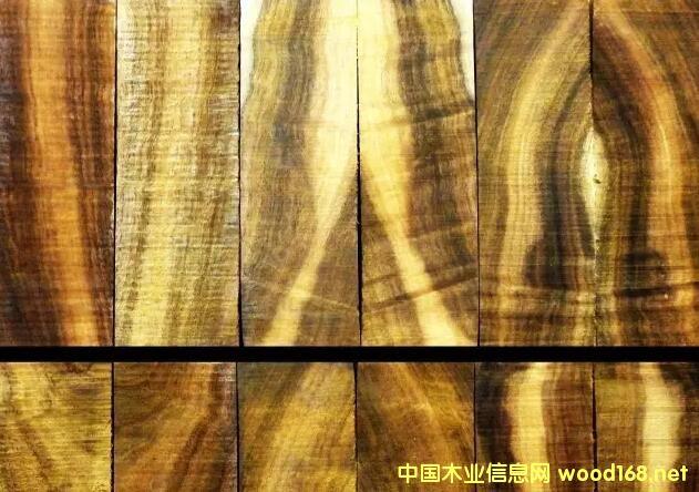 澳洲酸枝(坎贝格相思)原木和木材样板花纹