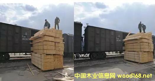 上海胜握胜林业开辟西南藏区新市场