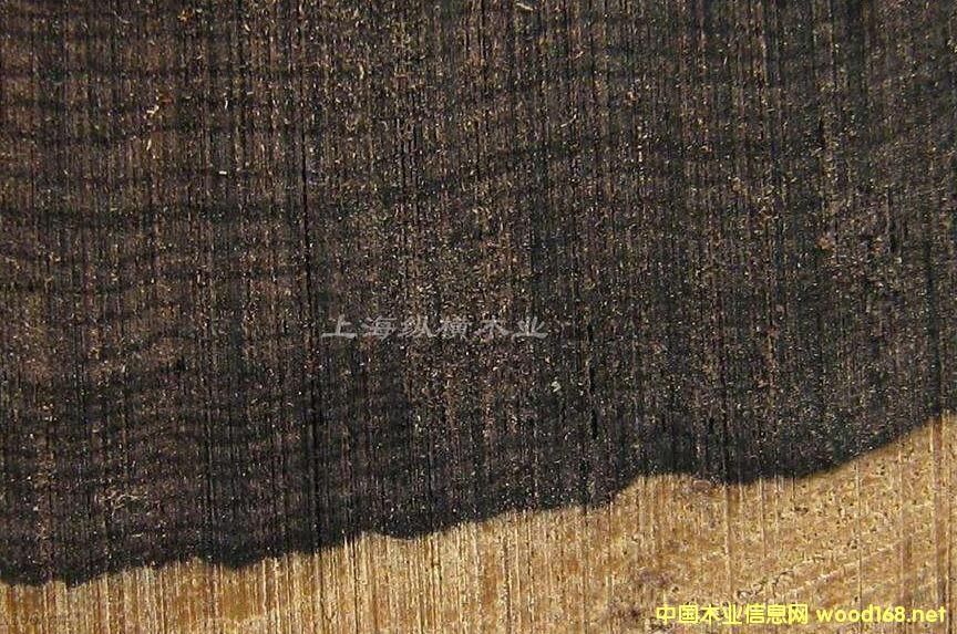 东非黑黄檀--木材纹理