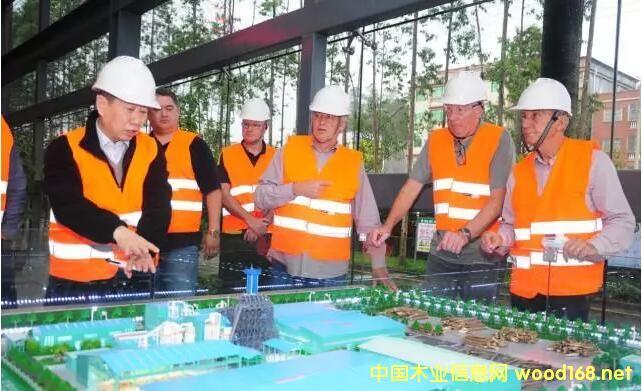 丰林集团募资8.7亿元拟在新西兰建刨花板厂