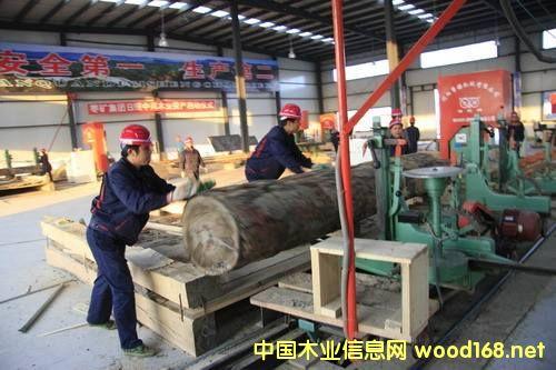 全国木材产业基地巡视之---岚山区木材产业