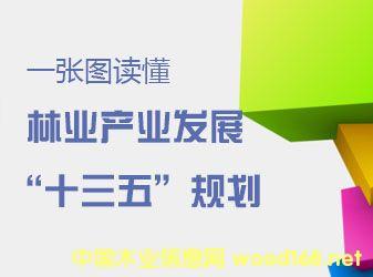 """中央11部委联合发布《林业产业发展""""十三五""""规划》"""