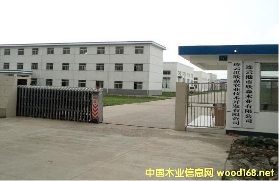 连云港欣森木业虚假申报国家资金3000万 法人和副总双双入狱