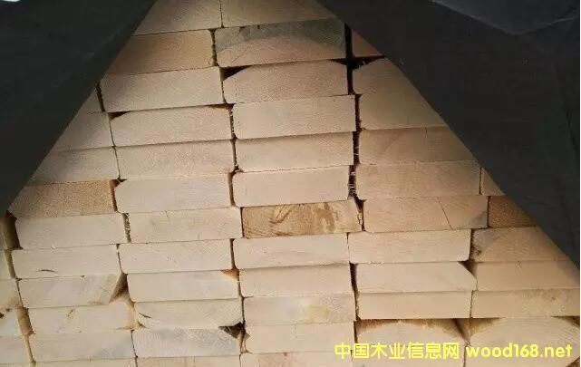 涨价不可避 囤货需尽早:5月木材市场展望