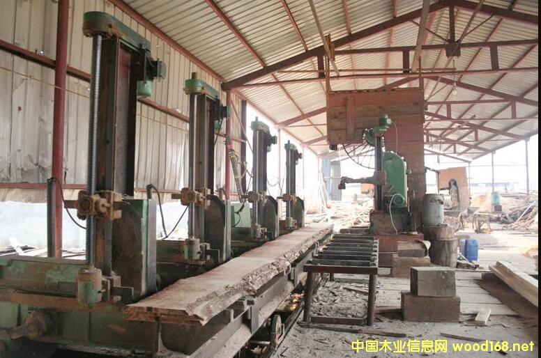 SPF价格不断上涨 国内加工北美原木成板材更有价格优势