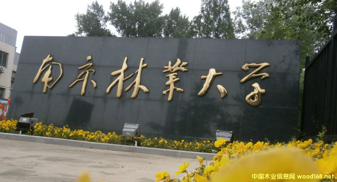 南京林业大学金永灿教授当选国际木材科学院院士