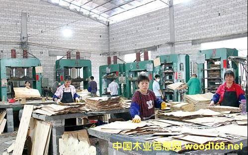 临沂板材企业到了外移的时候?广西贵港是个好选择!