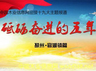 【迎接十九大特别报道】江苏省官湖镇:江北板材业内的璀璨明珠