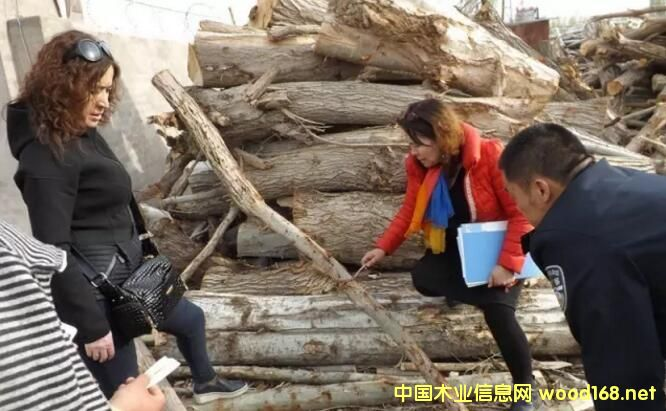 新疆和静县林业局对辖区木材加工厂开展联合检查