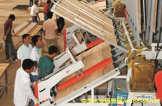 海南橡胶下属12家工厂年产橡胶木板材达30万立方米