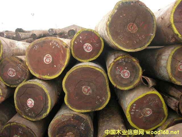国际木材市场观察:奥古曼需求强劲助长价格拉升