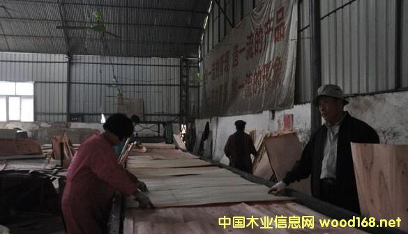 茌平县121家木材厂获得5000余万元的资金扶持