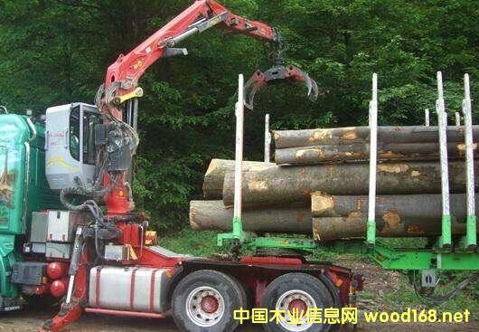全球软木出口量不断上涨