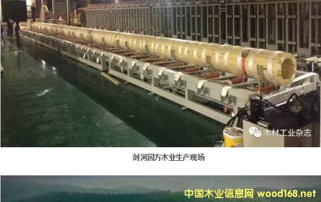 烟台博海机械木结构拼圆机投放市场