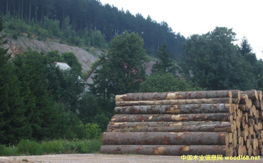 克罗地亚木材公司批准的2017年度采伐配额低于需求量