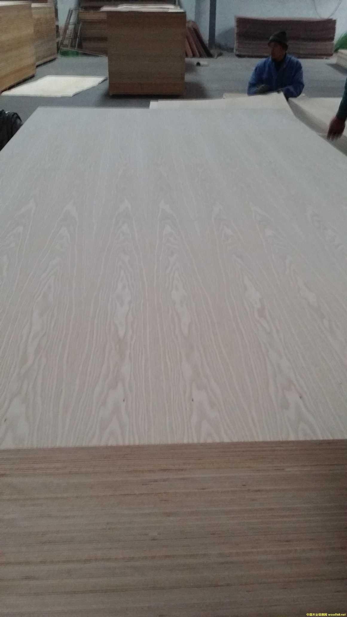 白橡木胶合板