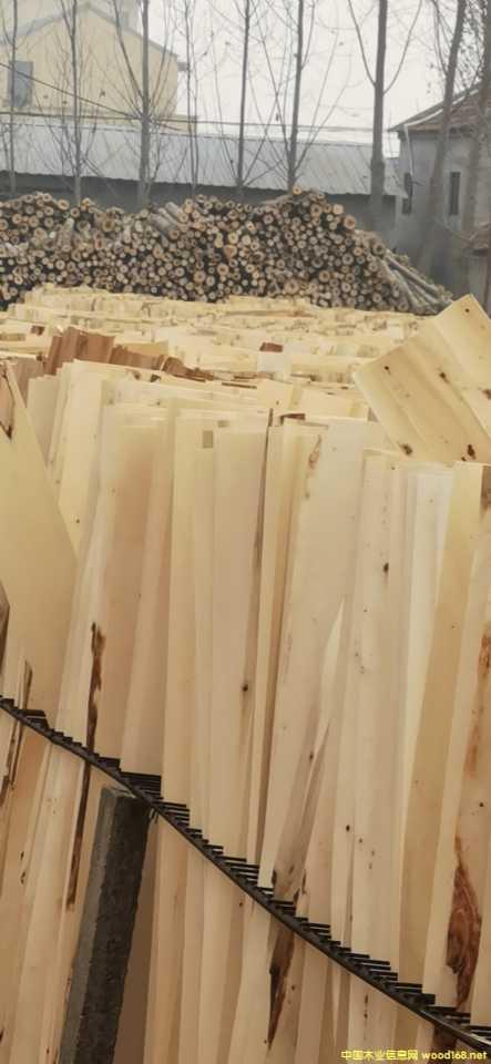 杨木芯板夹心皮单板纯平保张