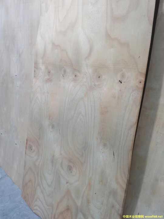 进口橡胶木旋切单板