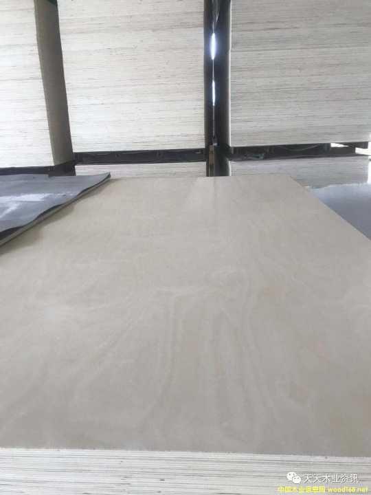 双贴原色桦木面皮的详细介绍